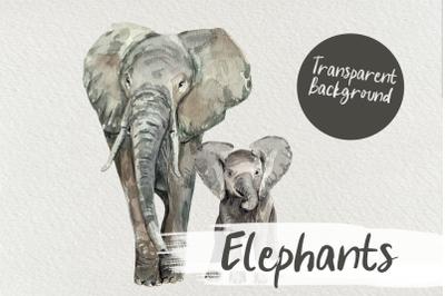 Watercolor Elephants Clip Art