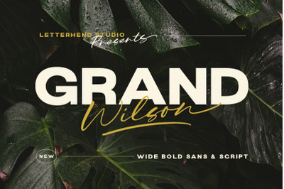 Grand Wilson - Font Duo