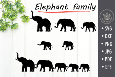 Elephant family holding tails svg cut file