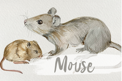 Watercolor Mother and Baby Mouse Clip Art
