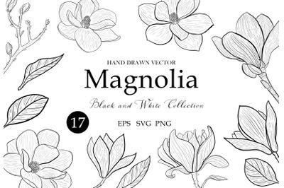 Magnolia Clipart svg, Floral Leaves, Flowers Botanical Decorative