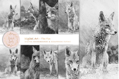 Digital Drawings The Fox