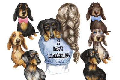 Dachshunds dogs watercolor clipart. Pet clipart. Dog clipart