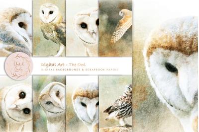 Digital Paintings The Owl