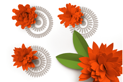 Rolled Paper Flowers - Long Petal Shapes | SVG | PNG | DXF | EPS