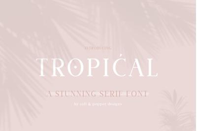 Tropical Serif Font (Serif Fonts, Instagram Fonts, Branding Fonts)