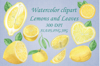 Watercolor clipart Lemons and herb.Summer time.Hand drawing