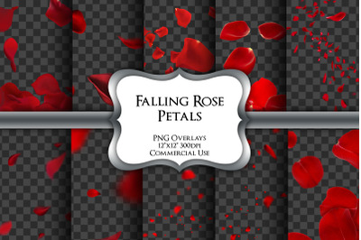 Falling Rose Petals Overlays Transparent PNG
