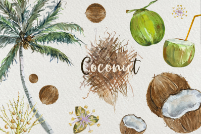 Coconut Cycle Clip Arts and Print