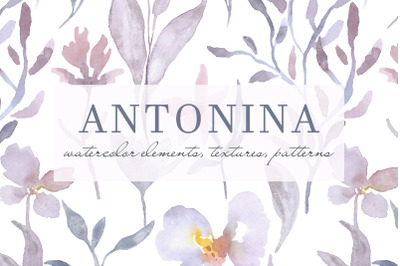 ANTONINA watercolor flowers, textures and patterns