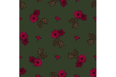 Chrysanthemum flowers drawing, bloom in pink colors, floral seamless p