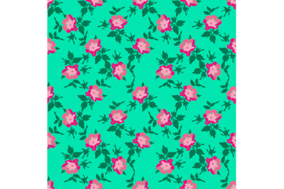 Drawing branches with flowers roses, bloom in pink colors.Floral seaml
