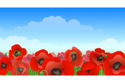 Illustrated poppy field landscape