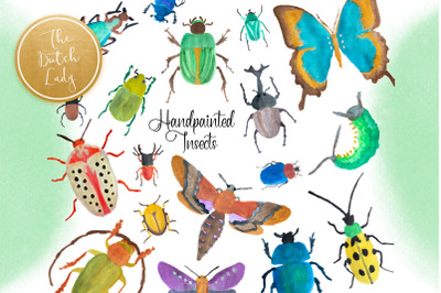 Handpainted Insect Clipart Set