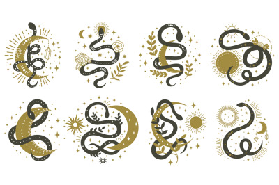 Mystical snakes. Floral boho and astrology minimalist elements with wr