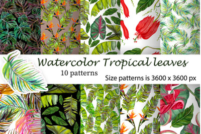 Tropical digital paper with green jungle