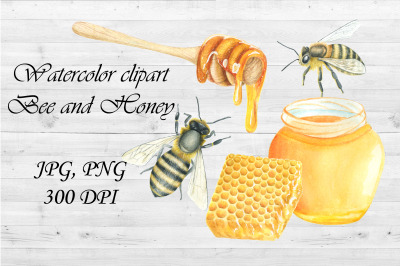 Watercolor Clipart Bee and Honey,honeycomb.Hand draw.PNG,JPG