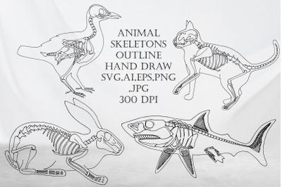 Bundle of Animal skeleton outline.Halloween.SVG,AI,EPS,PNG
