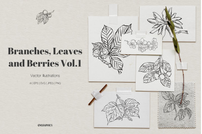 Branches, Leaves and Berries Vector Illustrations Vol.1