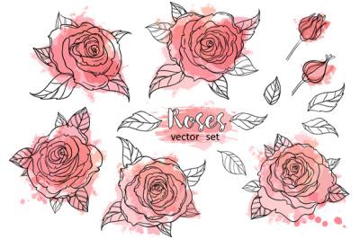 Roses. Vector Set. Vol.1