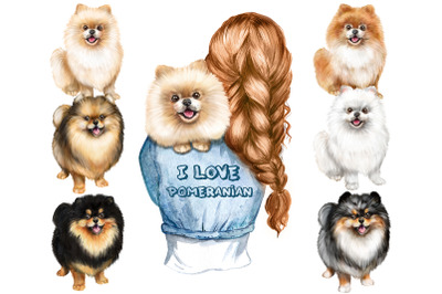 Cute Pomeranian Spitz Watercolor clipart. Gift for dog lovers PNG.