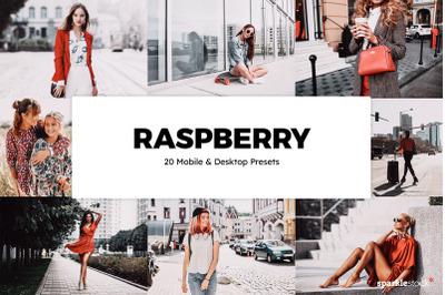 20 Raspberry Lightroom Presets & LUTs