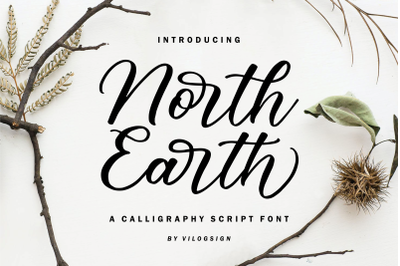 North Earth a Beautiful Calligraphy Script Font