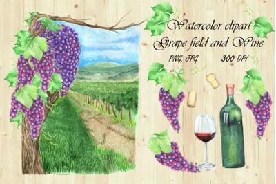 Watercolor Clipart Grape field and wine.Hand draw Landscape