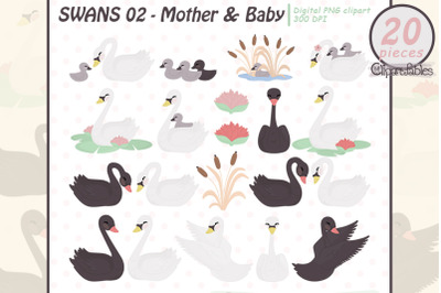 Cute SWAN clipart, MOTHER and Baby, Mothers day