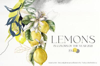 LEMONS Watercolor abstract line art citrus clipart