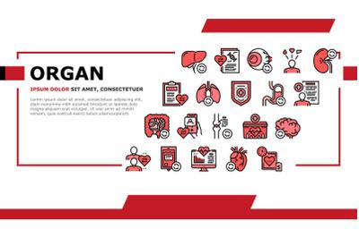 Organ Donation Medical Landing Header Vector