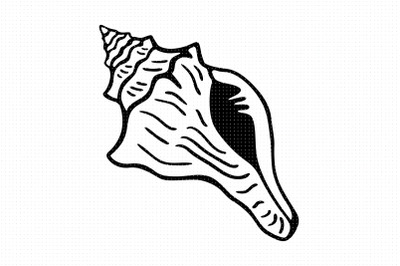 conch shell svg and png clipart