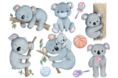 Set of 6 cute koaas. Watercolor illustrations.