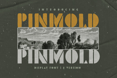 Pinmold - Modern Stencil Font