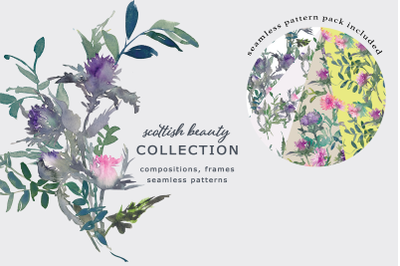 Watercolor Thistle Clipart and Seamless Pattern Collection