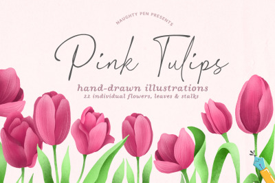 Pink Tulips Hand-drawn Floral Illustrations