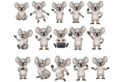 Set of Fifteen Koala Cartoon Collection