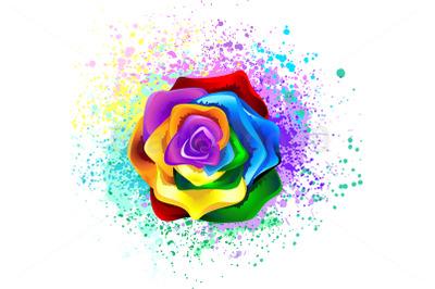 Colorful Rainbow Rose