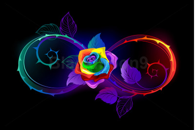 Bright Infinity with Rainbow Rose