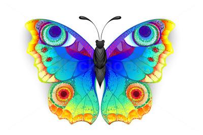 Rainbow Butterfly Peacock Eye