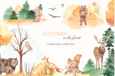 Autumn in the forest Watercolor