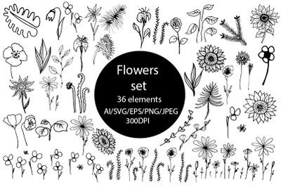 Flowers set SVG.  Floral botanical 36 elements leaves & flower.