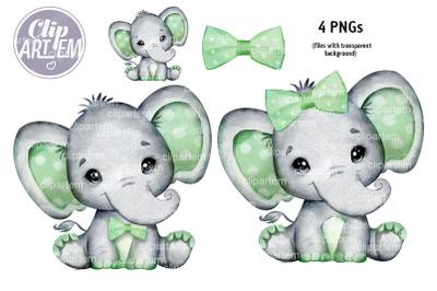 Cute  Boy / Girl Elephant Sage Green watercolor PNG
