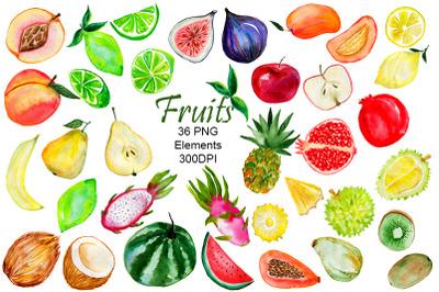 Fruit. Watercolor Clipart fruits. Fruit Ilustration.