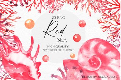 Watercolor coral clipart, Seashells clipart,  Watercolor sea coral png