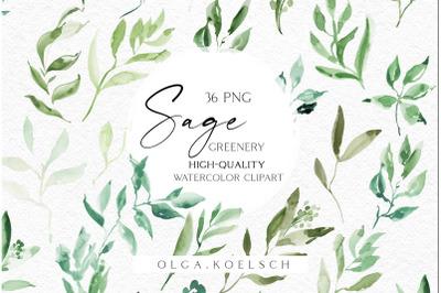 Watercolor boho greenery clipart, Grass greenery png, Watercolor grass