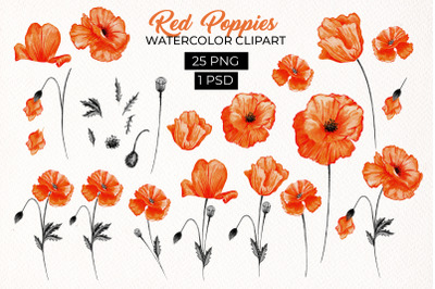 Red California Poppies Floral Design Clipart