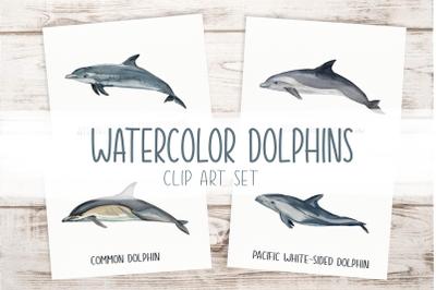 Dolphins Watercolor Clip Art & Print