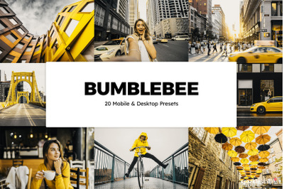 20 Bumblebee Lightroom Presets & LUTs