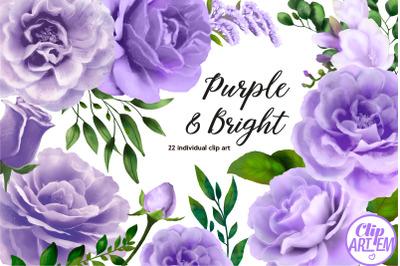 Purple Floral Watercolor Bundle 22 PNG,  roses  images clip art